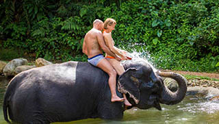 Activities in Thailand - Elephant Trekking