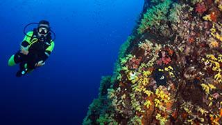 Scuba Diving Khao Lak