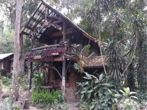Thanthong Lodge, Chiang Mai