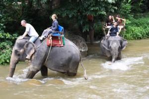 Krabi Rafting Tour Elephant Trekking
