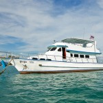 Phuket Game Fishing Charters