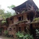 Chiang Mai Tours to Mae Kampong, Chiang Mai