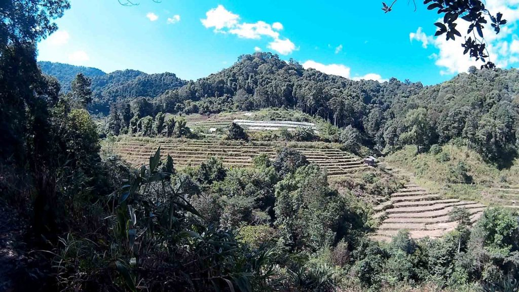 Chiang Mai, Doi Inthanon - Mountain Trekking