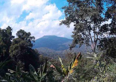 chiang mai, queen sirikit botanic garden - viewpoint panorama