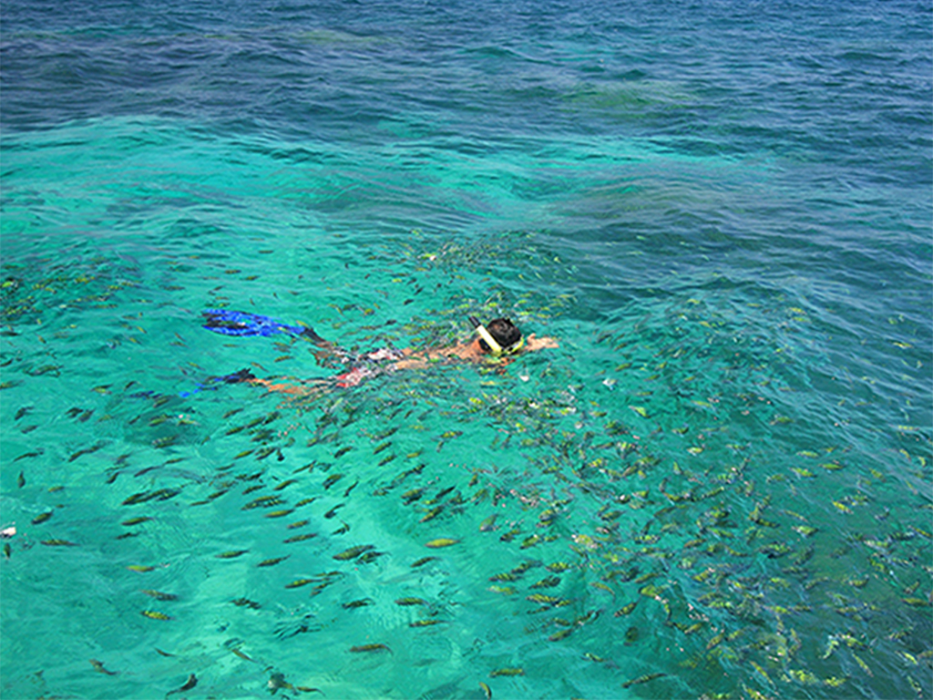 Best Tours From Phi Phi Island