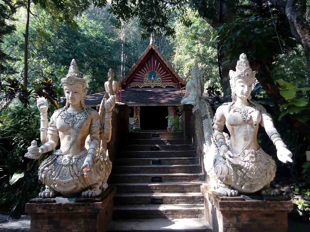 Doi Suthep Nature Lovers Tour Easy Day Thailand