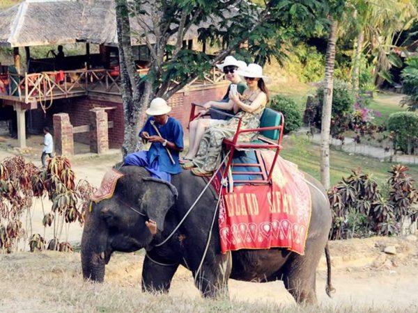 Krabi Rafting & Elephant Trekking