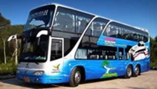Krabi to Koh Phangan Transfers - Bus 50 seats