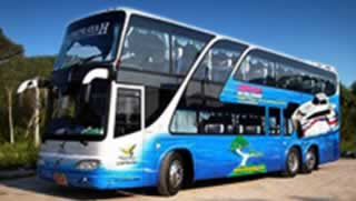 Phuket to Koh Samui Transfers - Bus 50 seats