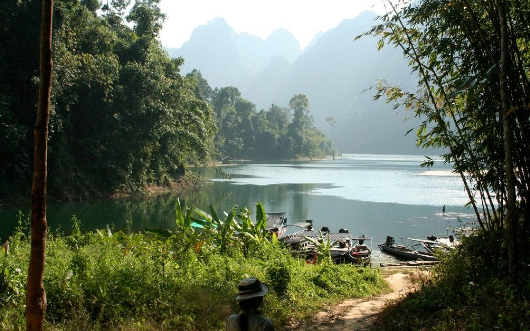 How to get to Khao Sok National Park